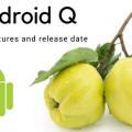 В Android Q появится темная тема – фото 1